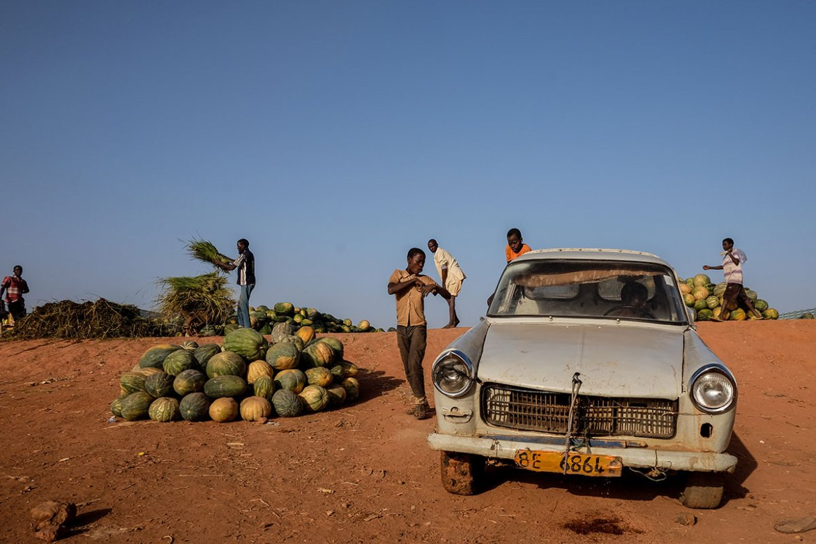 Boys load squashes on to a pick-up along the banks of the Niger River, in Niamey. [Ricci Shryock/Al Jazeera]