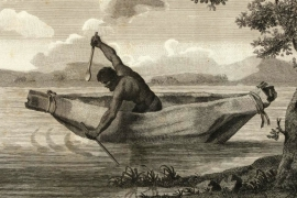 Bidjigal Aboriginal warrior Pemulwuy, drawn by Samuel John Neele in 1804 [State Library of Victoria]