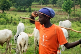 Haruna Mohammed, 16, herds his father's sheep on the weekends in Akwanga [Chika Oduah/Al Jazeera]