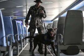 Members of the Canine Military Police Brigade Unit of Rio de Janeiro train their dogs in explosives searches [EPA]
