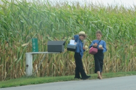 Amish children walking home from school. In the Amish tradition, children stop attending school when at age 14 [Jessica Sarhan/Al Jazeera]