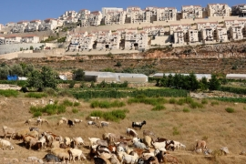 Israel plans to build 500 more illegal settlement homes in occupied East Jerusalem [File: Al Jazeera]