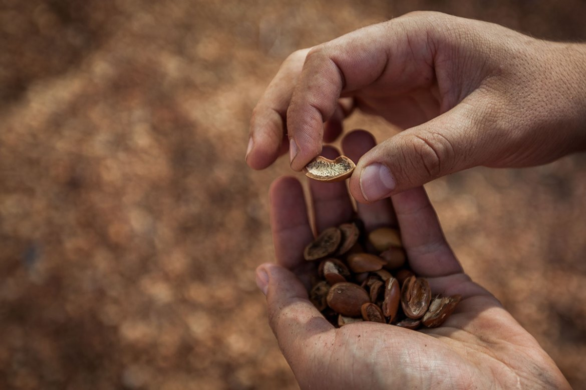 'It's a self-regenerating resource,' Khaldoun says of the argan shells. 'In the family, we have five hammams ... It's my father who wanted us to change. Without him, we would never have done it.' [Sebastian Castelier/Al Jazeera]