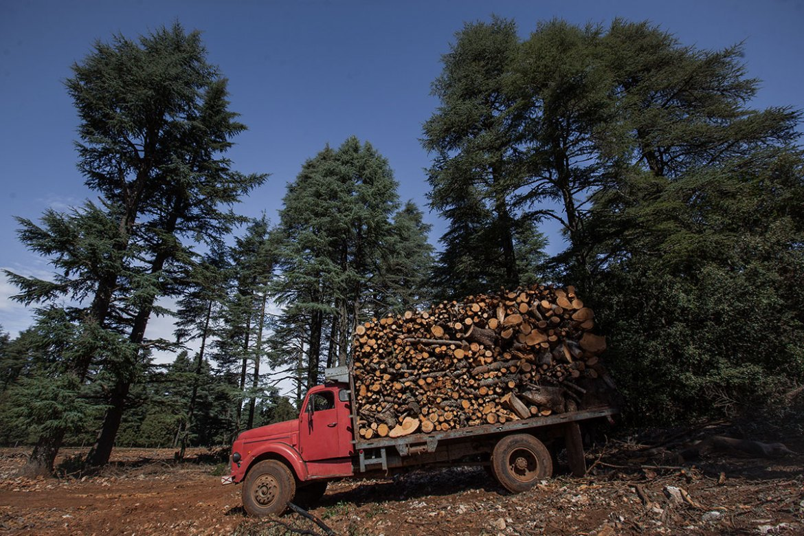 A truck filled with cedar waits to leave a forest bordering the city of Ifrane. [Sebastian Castelier/Al Jazeera]