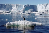 A two-degree increase in global temperatures could have catastrophic consequences, writes Seymour [Reuters]