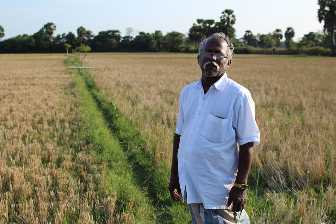 After crops failed on his six-acre (2.4 hectare) land, Jayapal Kaliyaperumal switched to vegetables and green gram. He also grew manure crops such as Kavalai for strengthening the soil. He says: 'It is important to grow manure crops and even leave the land alone for six months to regenerate. In the present scenario, farmers are continuously rotating crops, not allowing the soil to replenish.' [Sharada Balasubramanian/Al Jazeera]