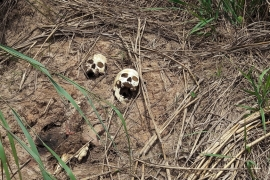 At least 80 mass graves identified so far, says UN peacekeeping mission [File: Aaron Ross/Reuters]