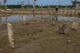 The village graveyard is often flooded. Villagers must wait for the water to recede to hold funerals and bury their dead. [Syarina Hasibuan/Al Jazeera]