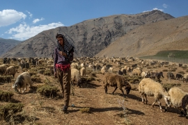 The border area is inhabited by Iraqi Kurdish shepherds and farmers. [Mauricio Morales/Al Jazeera]