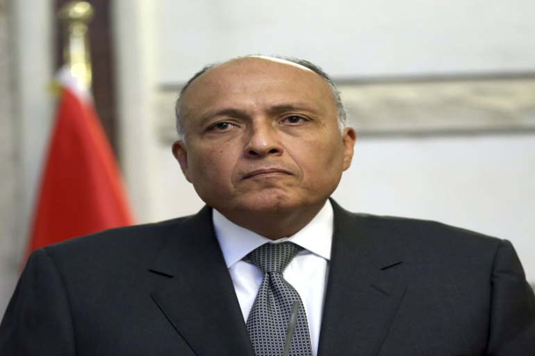 Egypt's Foreign Minister Sameh Shukri is on a tour to visit six Arab capitals in light of the Saudi Arabia-Lebanon [File: Reuters]