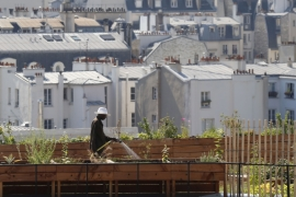 A man waters vegetable crops on a rooftop in Paris, France [Regis Duvignau/Reuters]