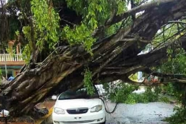 Damage in Dominican Republic from easterly wave [Jean Suriel]