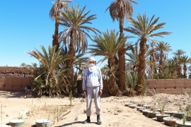 Morocco: Oasis on the front line of climate change