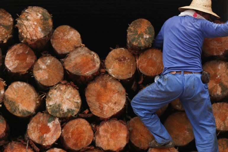 A worker climbs into a truck delivering timber at a wood processing plant in China [File: Thomas Peter/Reuters]