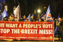 Protests outside Westminster Palace as Brexit vote postponed [File: Getty Images]