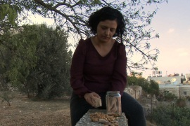 The Seed Queen of Palestine