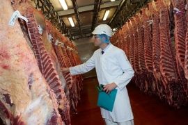 Under UK law, every abattoir must have a vet on site [Courtesy: Eville & Jones]