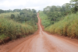 The Trans-Amazonian Highway [Sam Cowie/Al Jazeera]