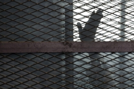 Rights groups estimate that some 60,000 detainees in Egypt are political prisoners [File: Amr Nabil/AP Photo]