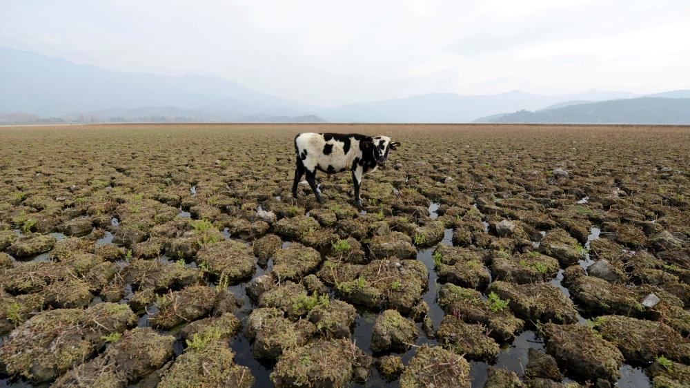 Earth set to warm over 3C despite pandemic, pledges: UN thumbnail