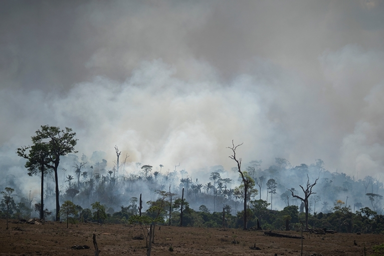 Brazil insisted on Tuesday that it would set conditions for accepting any aid to help fight Amazon fires [Leo Correa/AP Photo]