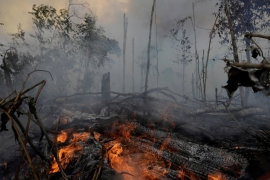 A fire burns a tract of Amazon jungle as it is cleared by loggers and farmers near Porto Velho, Brazil on August 27, 2019 [Ricardo Moraes/Reuters]