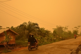 Fires have been raging in the southern part of Sumatra since July casting an eerie glow over villages and sending clouds of pollution over Malaysia and Singapore. {Raymondo/Al Jazeera]