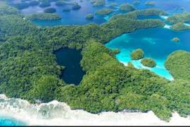 Palau corals 'may hold answer' to facing climate change threat