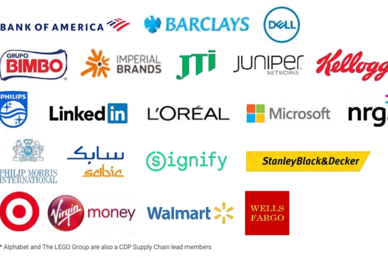 A coalition of banks, technology firms and companies from other sectors are placing stricter demands on their suppliers' power sources [CDP]