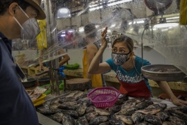 Should 'wet markets' be banned?