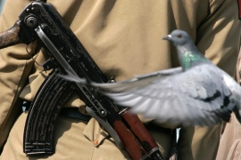 A pigeon flies near an Indian policeman in Srinagar, Kashmir [File: Reuters]
