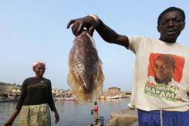 A fishermen holds a recent catch at the port near Elmina Castle, Ghana, where fish consumption accounts for more than half of the population's intake of animal protein [File: Luc Gnago/Reuters]