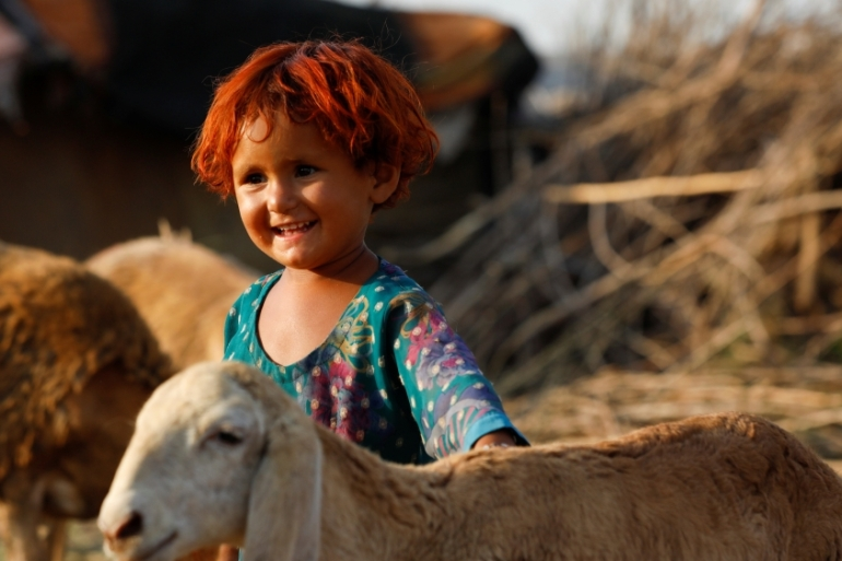 A girl stands with sheep ahead of the Eid al-Adha festival in Peshawar, Pakistan [Fayaz Aziz/Reuters]
