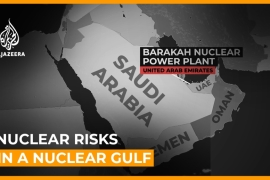 Nuclear Gulf: Experts warn of UAE nuclear reactor risks  [Daylife]