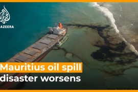 Oil spill off Mauritius coast threatens ecosystem  [Daylife]
