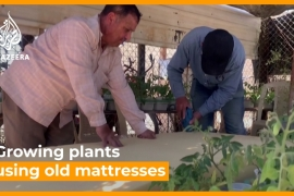 Syrian refugees grow crops using old mattresses  [Daylife]