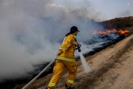 Dozens of balloon-borne incendiary devices have been floated into southern Israel igniting more than 80 fires, the military says [Tsafrir Abayov/AP]