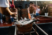 Deep-sea fishing is dangerous work at the best of times, but COVID-19 has made it even more risky [Martin San Diego/Al Jazeera]