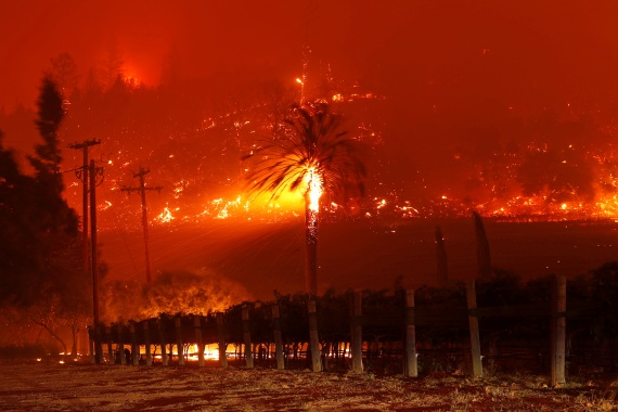 The blaze was fanned through the area's famed vineyards by dry wind gusts. [Stephen Lam/Reuters]