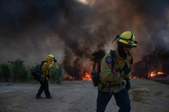 Firefighters stand near the encroaching Glass Fire as it burns a vineyard in Deer Park. [Adrees Latif/Reuters]