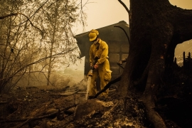 Thousands of firefighters have been deployed to battle deadly wildfires along the United States' West Coast [Kathryn Elsesser/AFP]
