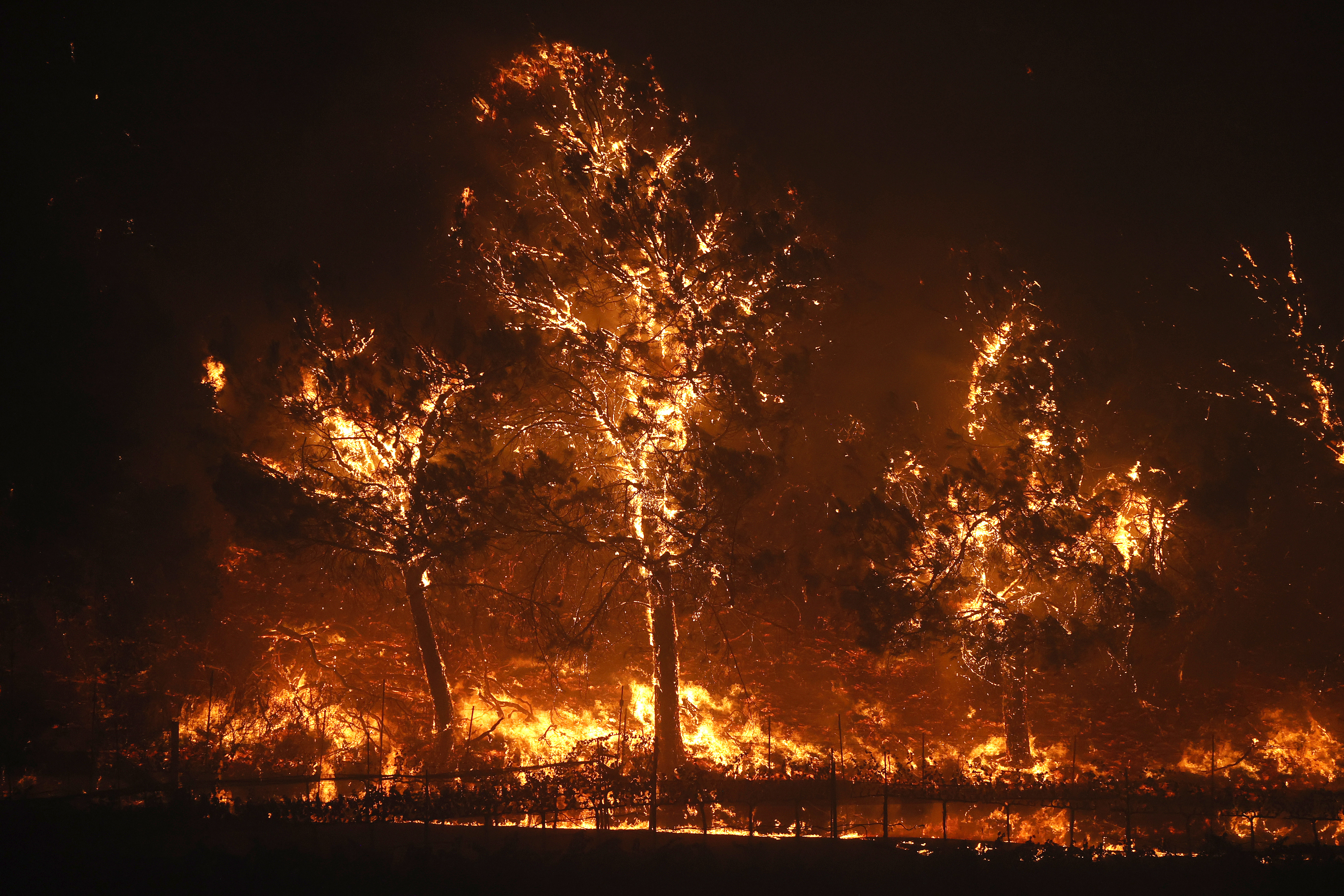 Glass Fire in California quadruples in size