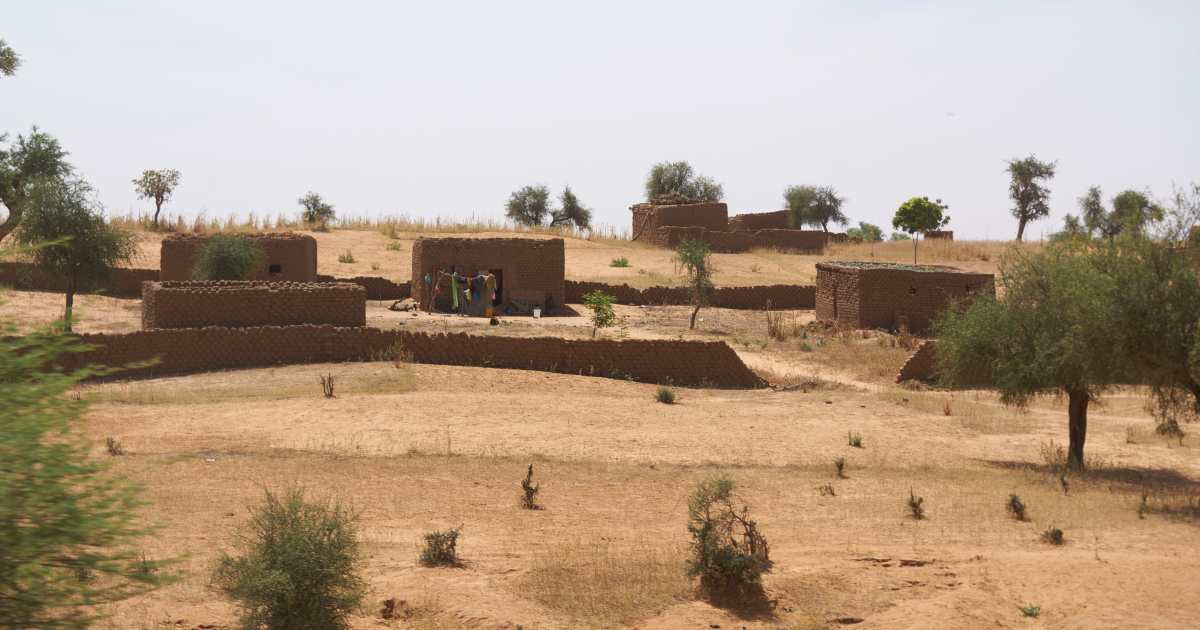 Mali prisoner swap 'to see politician, French aid worker freed'