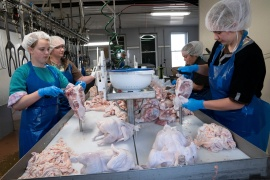 Workers prepare chicken at Buckeye Poultry in Greenwich, Ohio, U.S., May 13, 2020 as the coronavirus disease (COVID-19) outbreak continues. Picture taken May 13, 2020. REUTERS/Dane Rhys (Reuters)