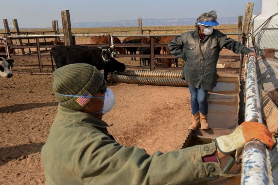 Maybelle Sloan, 59, and her husband, Leonard Sloan, 64, both from Navajo Nation, give water to their cattle, in the Bodaway Chapter in the Navajo Nation in Gap, Arizona. [Stephanie Keith/Reuters]