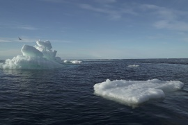 Warmer-than-normal seawater slowed the formation of new ice in October [File: Natalie Thomas/Reuters]