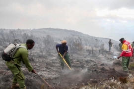 Rangers and volunteers help to put out fires on Mount Kilimanjaro in Tanzania. [AP Photo]