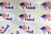 Congressional, gubernatorial and other state and local races will also be on the ballot [Hans Pennink/AP]