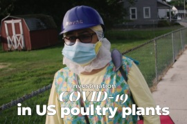 How US poultry plants became deadly COVID-19 hotspots