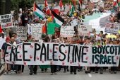 Pro-Palestinian protesters take part in a demonstration against Israel's military action in the Gaza Strip, in Ottawa on July 26, 2014 [File: Reuters/Chris Wattie]